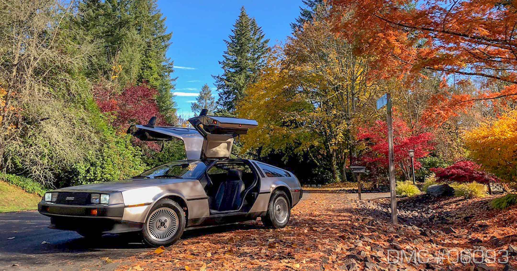 SCEDT26T7BD006093 | DeLoreanDirectory.com